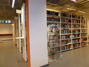 view of library shelves, an image of a troll is layered above the image half-transparently